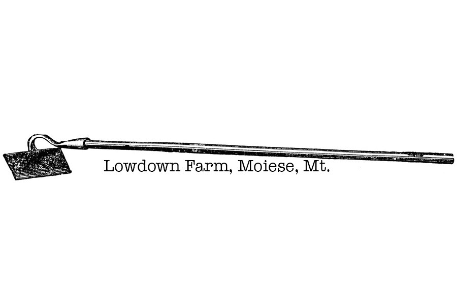 LOWDOWN FARM