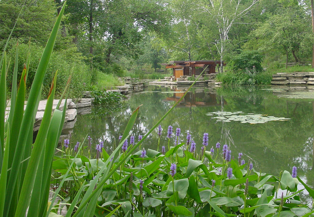 Restored Alfred Caldwell Lily Pool in Lincoln Park, 2010.