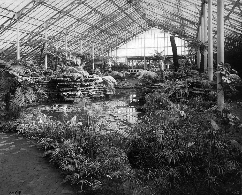 View of Fern Room looking towards Palm House, 1909.  Chicago Public Library Special Collections, Chicago Park District Archives, Photos.
