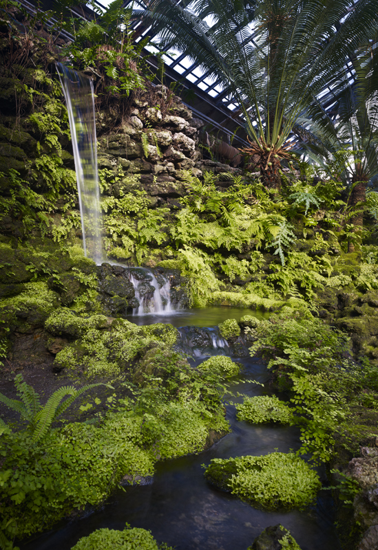 Contemporary view of waterfall and its lushly planted stonework, 2014. Hedrich Blessing Photographers.