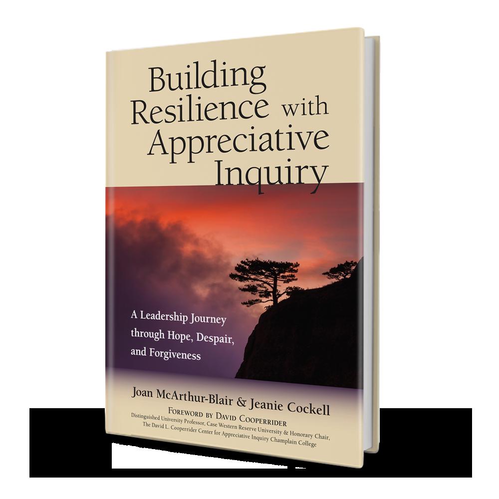 BuildingResilience_3d.png