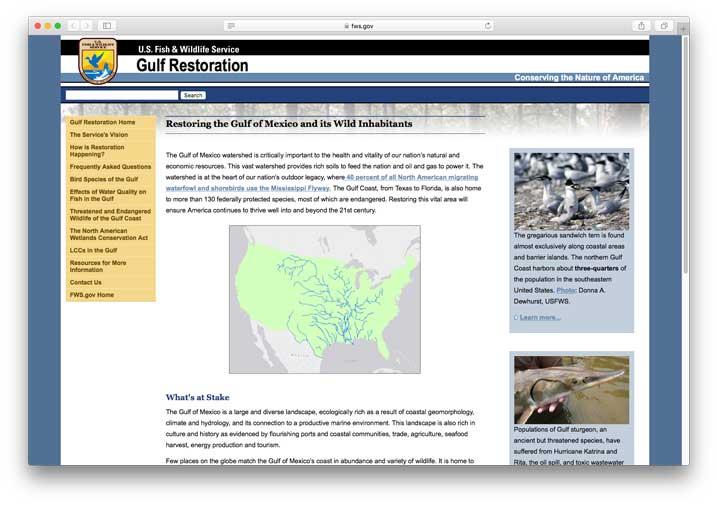 Gulf Coast Restoration, U.S. Fish & Wildlife Service