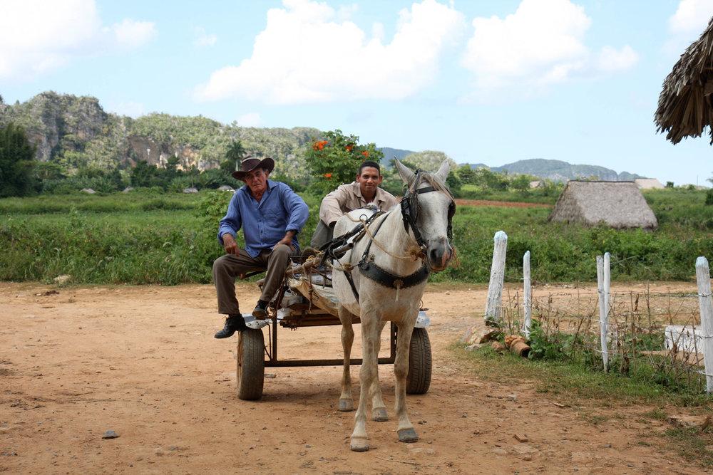Cuba12mg - 0208e.jpg