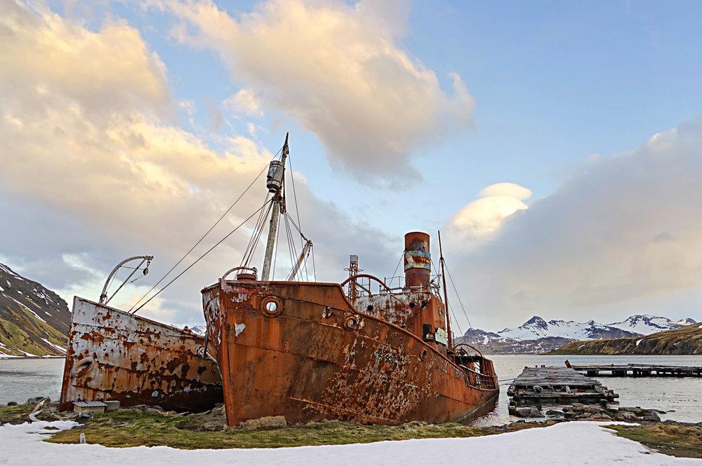 Grytviken whaling station ruins