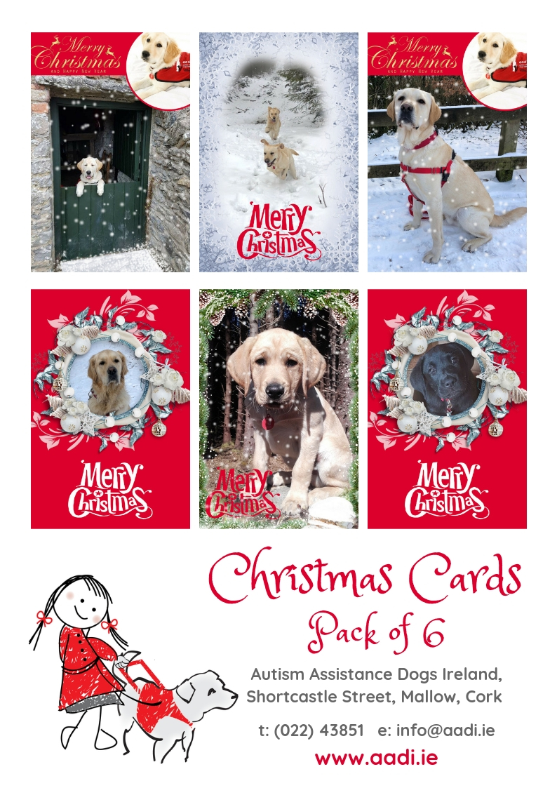 Christmas Cards — Autism Assistance Dogs Ireland