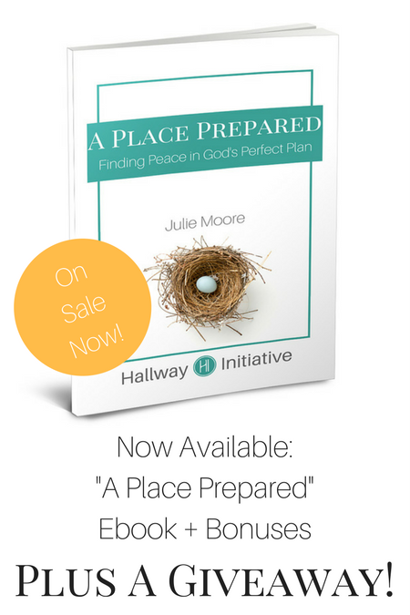 A Place Prepared Ebook Giveaway