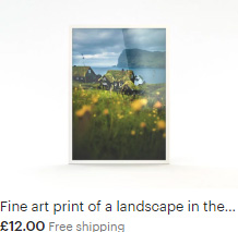 Fine art print of green roof huts in the Faroe Islands with beautiful yellow flowers in the foreground