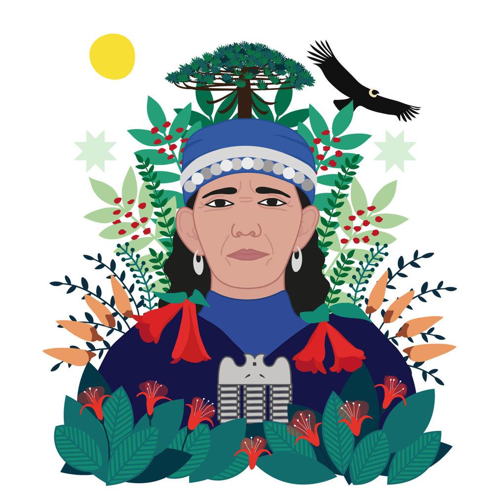 Illustration by Constanza Olea