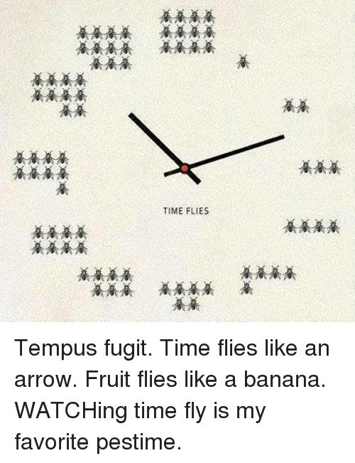 time-flies-tempus-fugit-time-flies-like-an-arrow-fruit-25825156.png