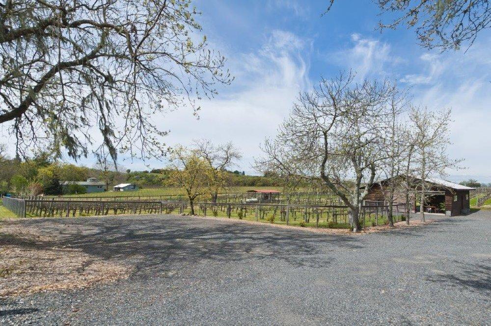 vineyard+barn.jpg
