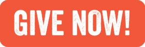 Give-Now-Button-01.png
