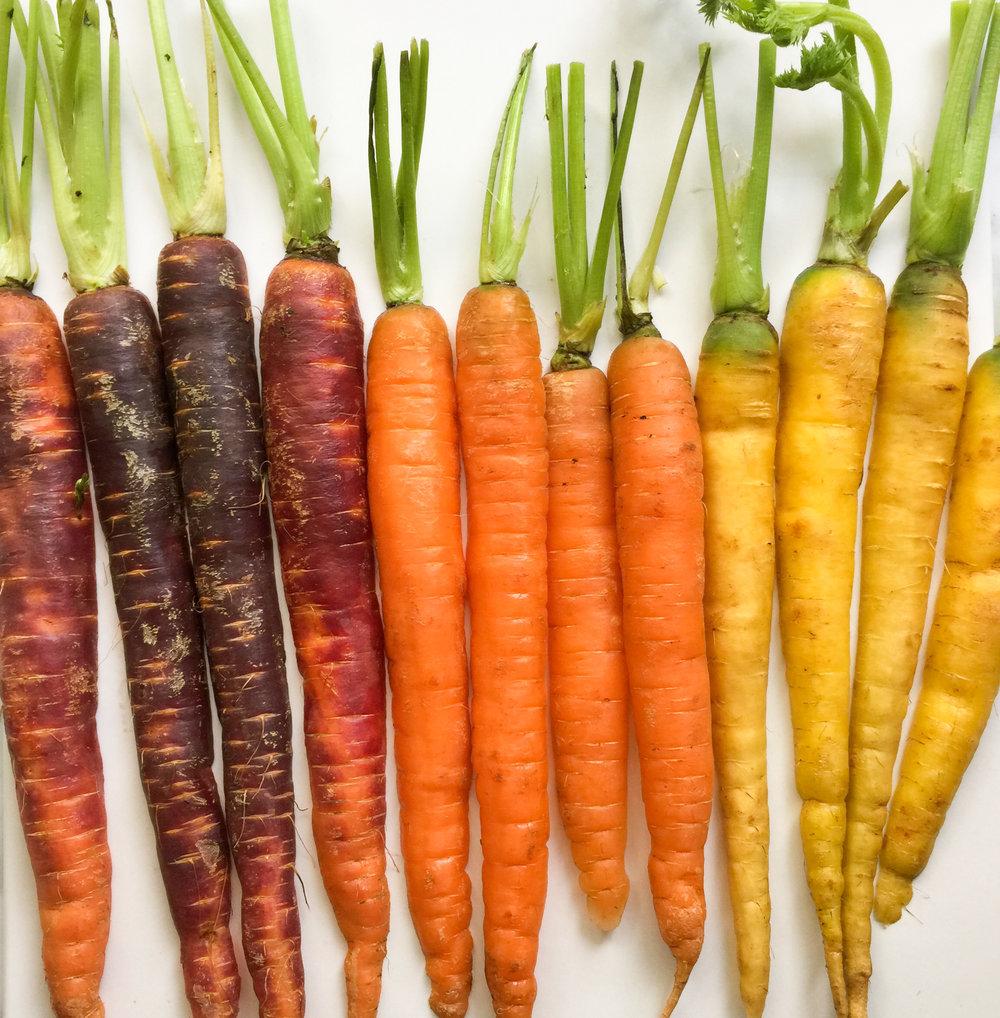 carrotsrainbowcloseup2.jpg