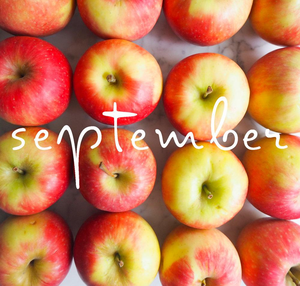 september120pt.jpg