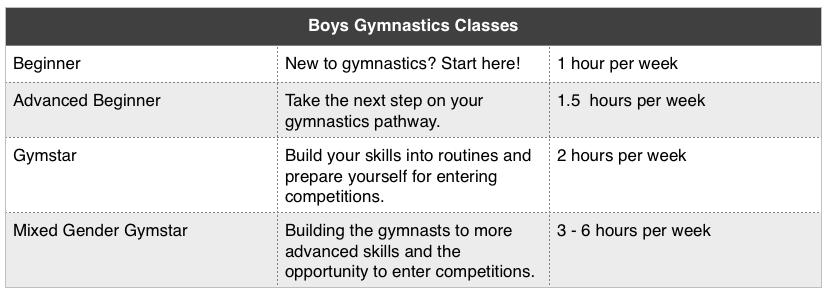 Boys Gymnastics Classes