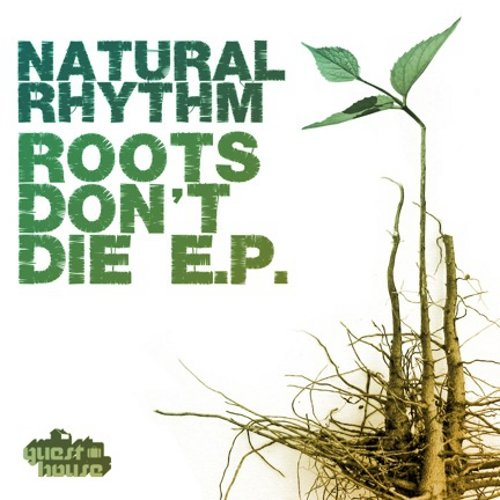 Roots Don't Die EP  Guesthouse (2011)