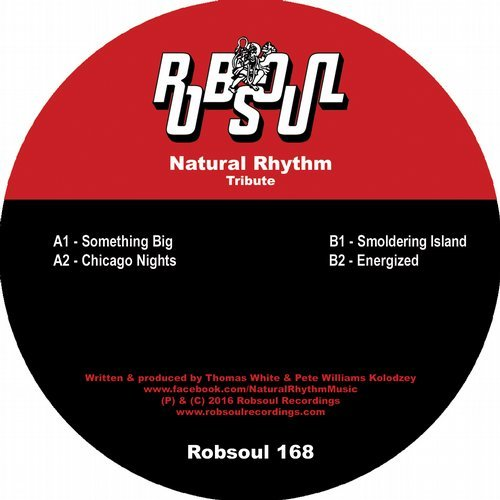 Natural Rhythm Tribute  Robsoul (2016)