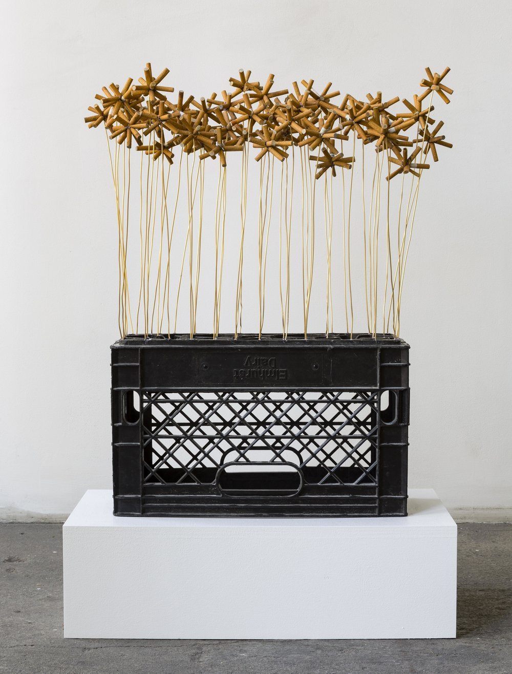 Rodriguez, Shellyne, Orthography of the Wake, 2018, Assemblage, Cigarette butts, bronze wire, crate, 29 x 19 x 7 inches (37 x 24 x 13 inches with crate).jpg