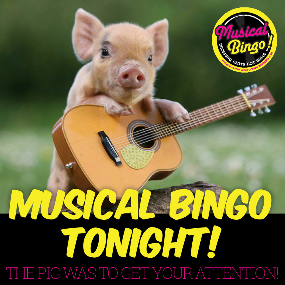 MUSICAL BINGO SOCIAL MEDIA & NIGHTLIFE13.jpg