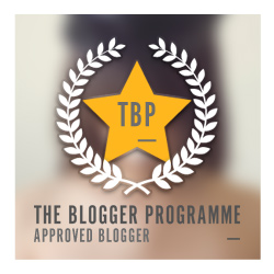 The Blogger Programme