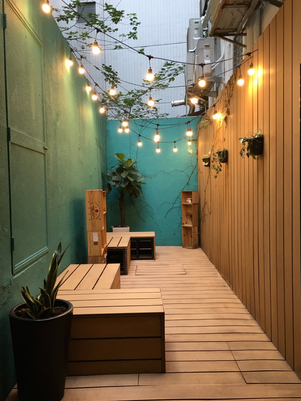 WELLNESS GARDEN W FAIRY LIGHTS.JPG