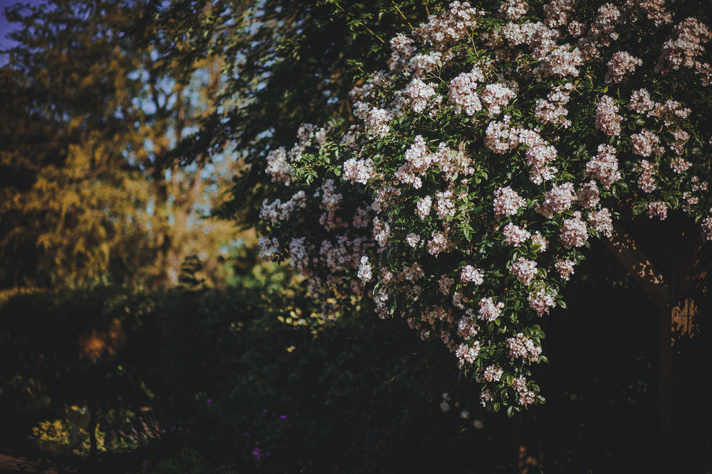 Spring Getaway.jpg