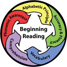 5 Big Ideas Circle Graphic.png