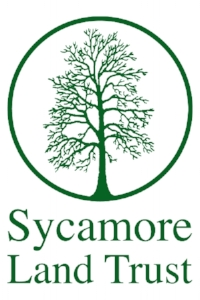 Sycamore_One_Tree_Logo_357_white-center2.png