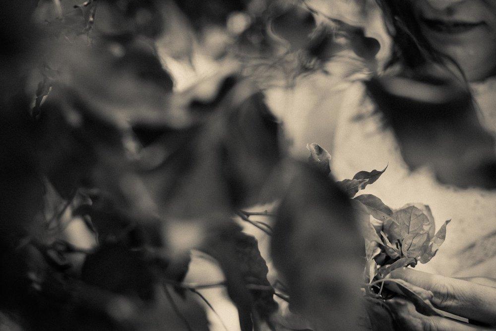 ©PeteLongworth-StacySmith-010.jpg