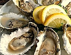 Great+Wicomico+oysters+small.jpg