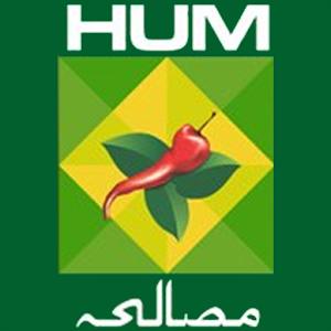hum masala logo.png