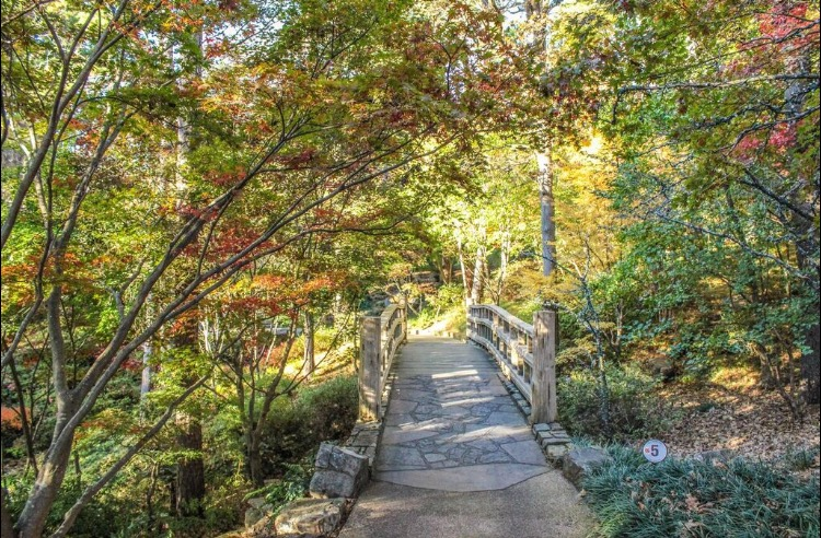 Visiting Hot Springs, Arkansas and Hot Springs National Park? Here is your travel guide on what do, where to eat and what to see.