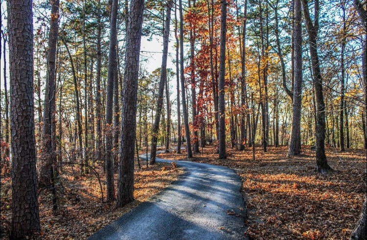 Garvan Woodland Gardens, Hot Springs, Arkansas