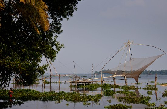 Fishing-nets1.jpg