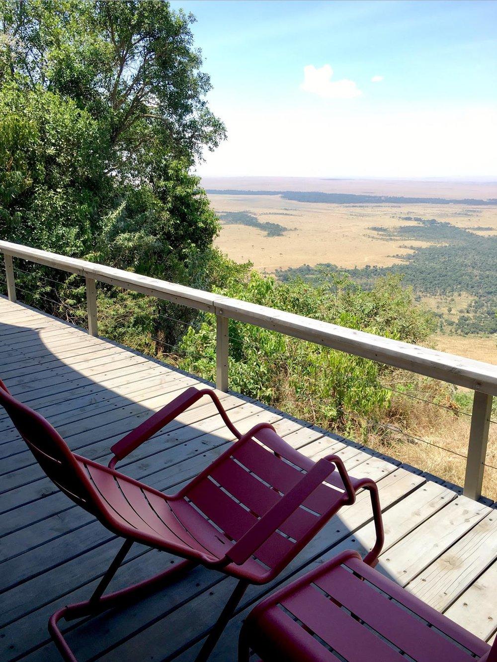 Sunlounger safari.jpg