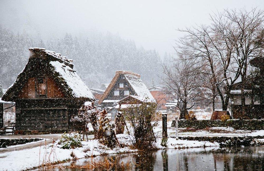 Snowy scene.jpg