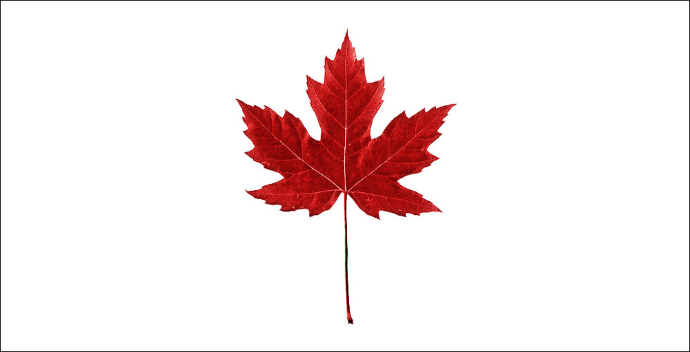 Canada-Maple-Leaf-Symbol-Picture4.jpg