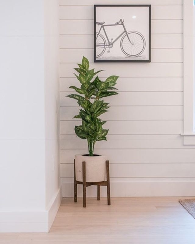 G I V E A W A Y✨ We're celebrating the opening of the BRAND NEW beautiful show home 'The Magnolia' by @homesbyhighgate. We have teamed up with this amazing custom home building company to giveaway some local home decor that make this home so very chic and cozy! You win; mid-modern plant stand, concrete pot & plant as well as the off-the-charts popular Power Designs blanket ladder. 🙌 Both items are featured in 'The Magnolia' and we can't wait to see who's home they'll be going to next!  To Enter: ✨ FOLLOW @homesbyhighgate &  @powerdesignshalifax & @concreteiscool ✨ LIKE this photo ✨TAG (in separate comments) TWO friends who would love these products as well! The more tags the more entries! . Goodluck Everyone! . . This giveaway is open to HRM residents and will close on Monday October 8th at 8PM. Winner will be chosen by random draw and will be announced on this post. This giveaway is in no way affiliated with Instagram.