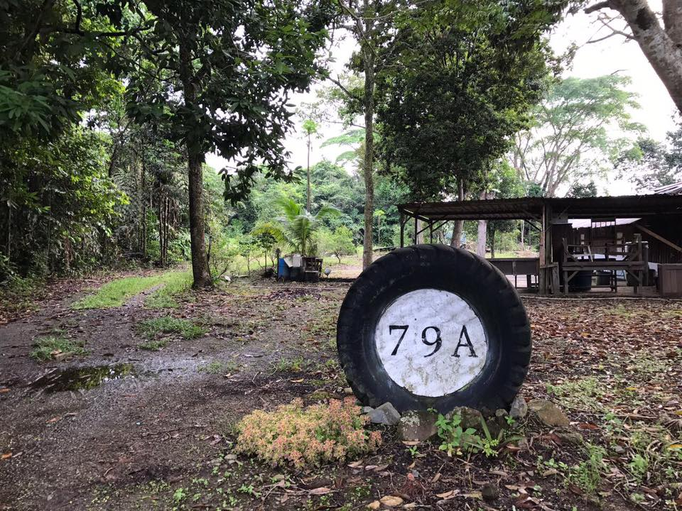 79A. This understated upcycled tyre address marker shows the way in. Roll along and enter a hidden piece of Ubin paradise.