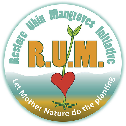 Restore Ubin Mangroves (R.U.M.) Initiative The R.U.M. volunteers of Pulau Ubin focus on educating and supporting the precious mangroves that serve as an organic buffer between Singapore's islands and the sea! With collaboration with Sea Angel and Pesta Ubin, R.U.M. offers free mangrove walks, kids activities, and boat tours that fascinate one and all.