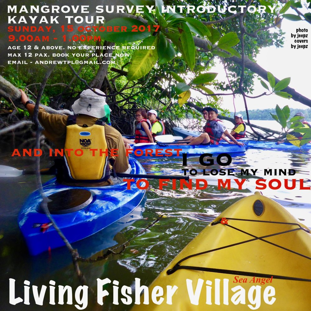 Event: Mangrove Survey Introductory Kayak Tour Date: Sun, 15 Oct 2017, 9am - 1pm Do join us for a leisurely kayak tour and learn more about the fascinating Mangroves of Pulau Ubin. No experience required. Limited slots, book your place now with andrewtpl@gmail.com. To complete your registration, please fill up the form at this link upon confirmation of availability and payment.  For further inquiries, do send us an e-mail at andrewtpl@gmail.com / ubinseaangel@gmail.com