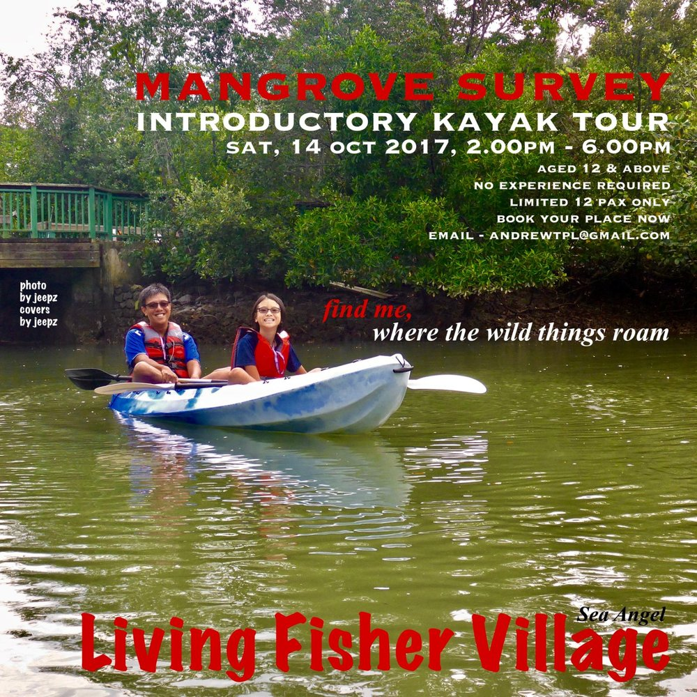 Event: Mangrove Survey Introductory Kayak Tour Date: Sat, 14 Oct 2017, 2pm - 6pm Do join us for a leisurely kayak tour and learn more about the fascinating Mangroves of Pulau Ubin. No experience required. Limited slots, book your place now with andrewtpl@gmail.com. To complete your registration, please fill up the form at this link upon confirmation of availability and payment.  For further inquiries, do send us an e-mail at andrewtpl@gmail.com / ubinseaangel@gmail.com