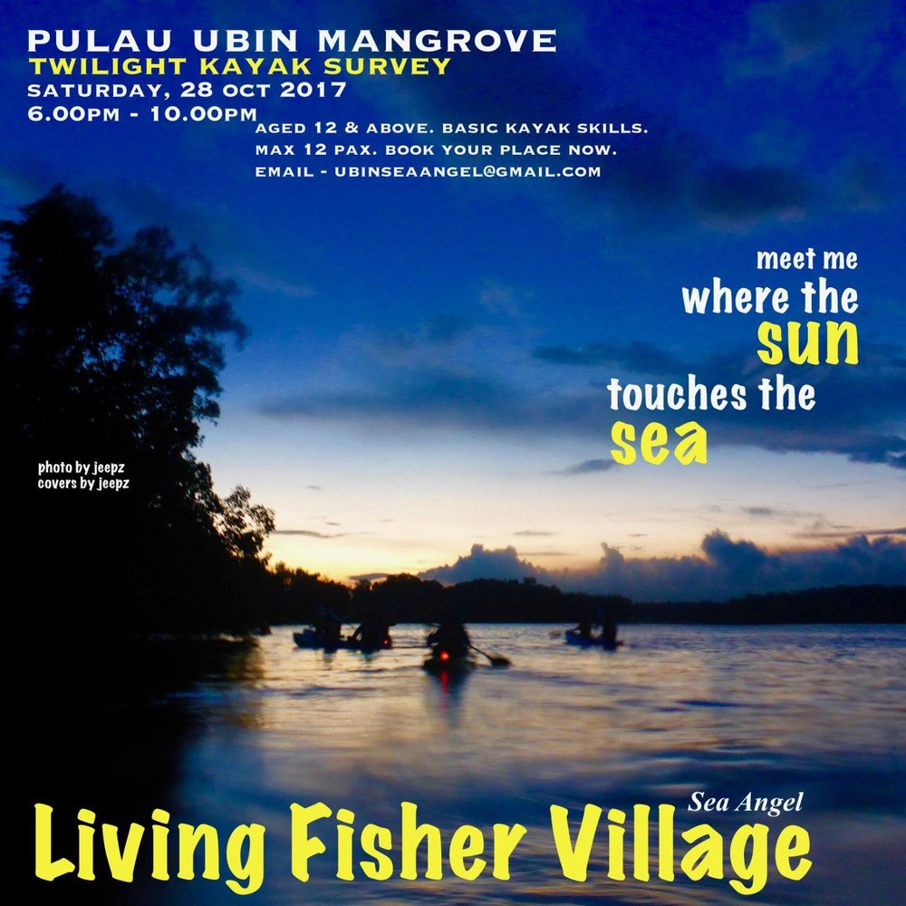 "Pulau Ubin Mangrove Twilight Kayak Survey Date: Sat 28 Oct 2017 Time: 6pm - 10pm ""Meet me where the sun touches the sea"" Watch the Grey Heron takes flight home in the setting sun & the black shadowy bats flirts its way among the trees for its first meal of the night. Smell the sweet soury breath of the mangrove sea apple & the salty marshes as the summer tide turns. Row into the brilliant firery sunset & watch the shy crescent moon rising from the horizon as the stars begins its sparkling dance across the sky. Join the Sea Angel guides and be introduced to the magic twilight world of the mangrove. *Age: 12 years & above *Basic kayaking skills required Limited slots, book your place now with ubinseaangel@gmail.com Click the link below for registration & payment steps. https://goo.gl/forms/KpZ4fhg5XPHCLFL02 Note: Booking Confirmation upon payment received."