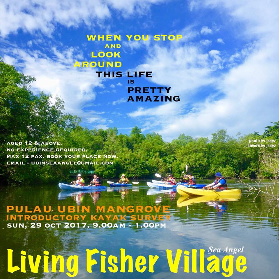 "Pulau Ubin Mangrove Introductory Kayak Survey Date: Sun 29 Oct 2017 Time: 9am - 1pm ""When you stop and look around, this life is pretty amazing"" Take a break from city life & dive into the tranquil world of Pulau Ubin's mangrove. Row across the smooth green ripple sea to catch a glimpse of Nature's amazing creatures. Watch the white clouds drift by & breathe the fresh air of Pulau Ubin mangrove. Dip your tired feet into the warm sea waters & feel the stress from city life drains away. Let the passionate Sea Angel guides show you how to stop & look at Nature, up close & personal. *Age: 12 years & above *Basic kayaking skills not required Limited slots available, book your place now with ubinseaangel@gmail.com Click the link below for registration & payment steps. https://goo.gl/forms/h1dU7jITA4pX25al2 Note: Booking Confirmation upon payment received."
