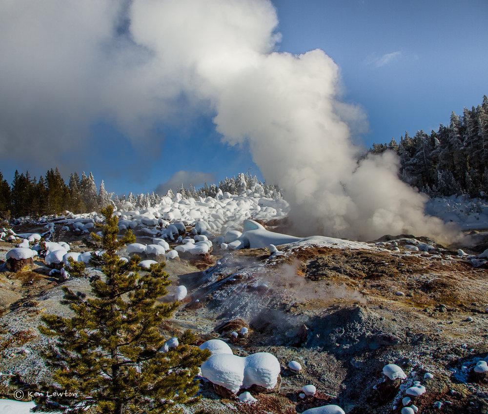 Amazing Winter in Yellowstone