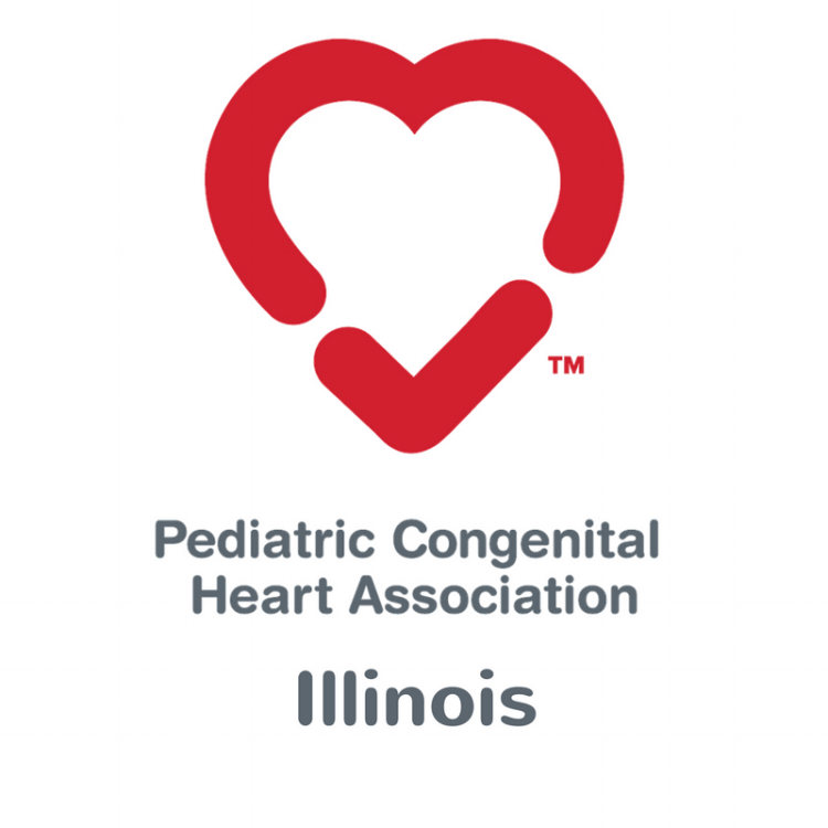 The Pediatric Congenital Heart Association of Illinois provides heart families with support and comfort. They are an organization that also advocates for the entire CHD Community. Chicagoland CPR supports the wonderful families of  PCHA IL .