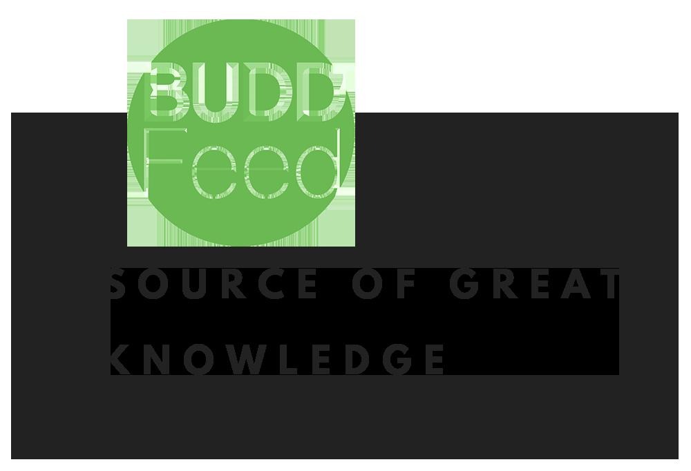 BuddFeed