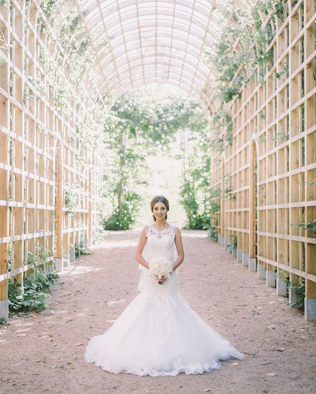 Ett par timmar innan vigseln . . . #lumensfoto #bröllopsfilm #bröllopsvideo #bryllupsvideo #bryllupsfoto @gunneboslott