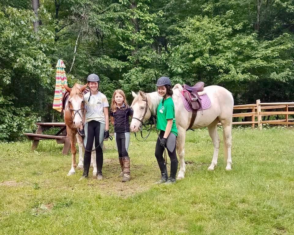 Bark Meadow Horse Camp.jpg