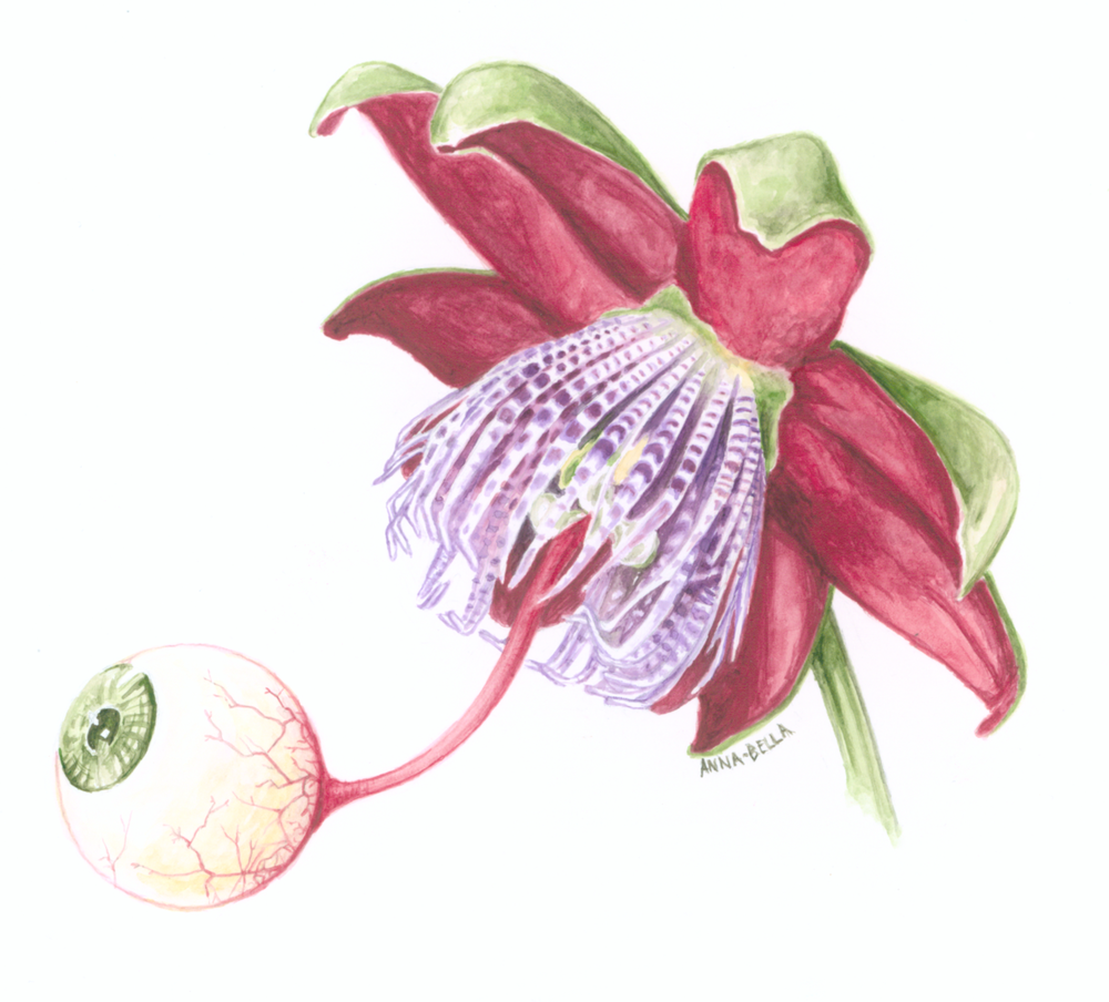 In Bloom . watercolor on Bristol