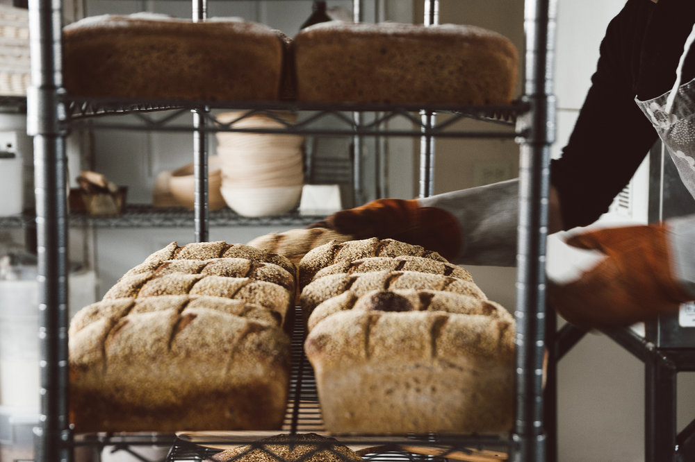 Stella_Bakery-73.jpg